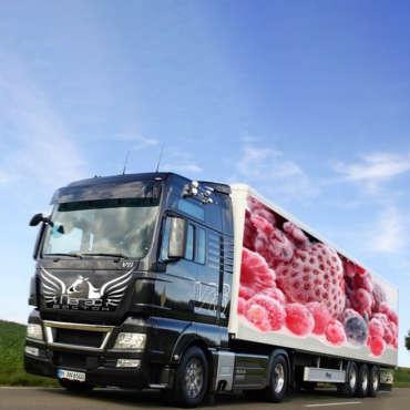 Перевозка замороженных продуктов